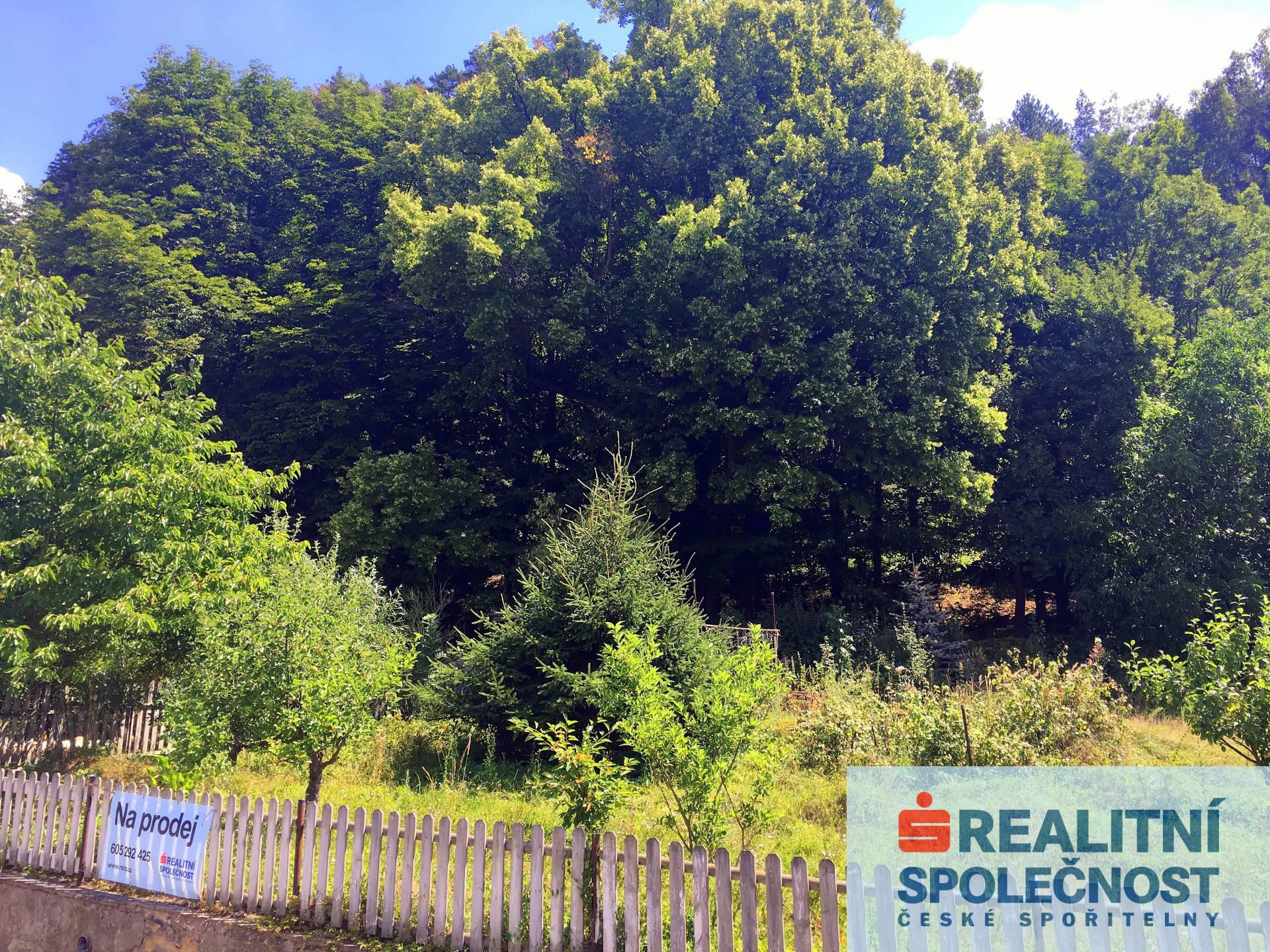 Prodej, Pozemek zahrada, 558 m2, Vojkovice
